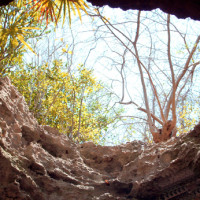 Cueva Finlay