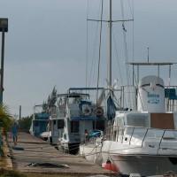 Marina Colony