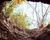 cueva-finley